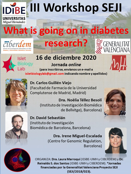 III Workshop SEJI : What is going on in diabetes research?